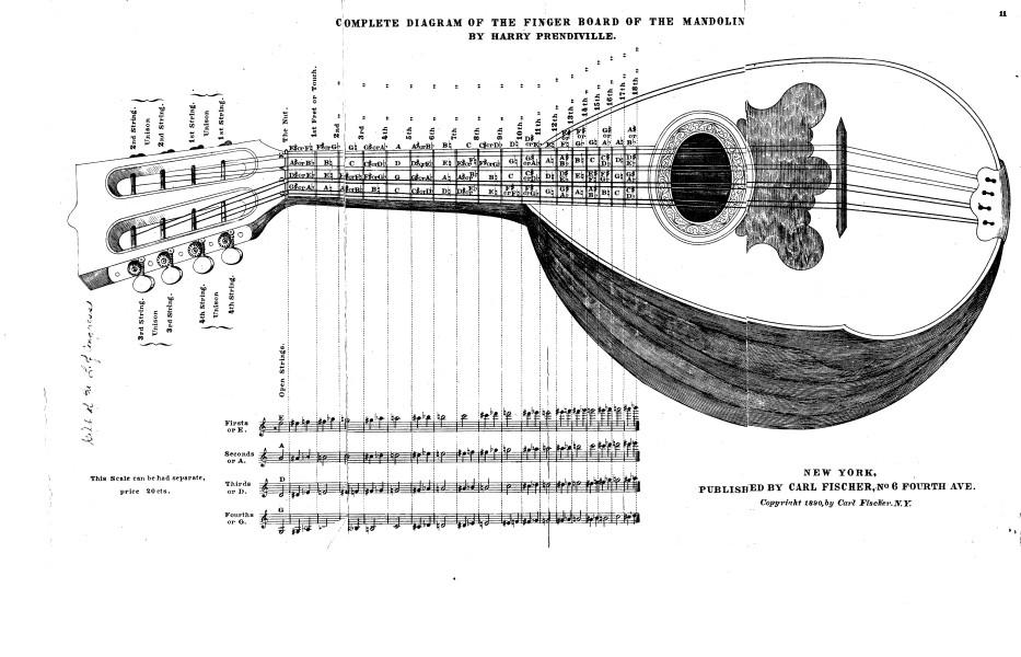 Diagram Of Mandolin Wiring Diagram Site